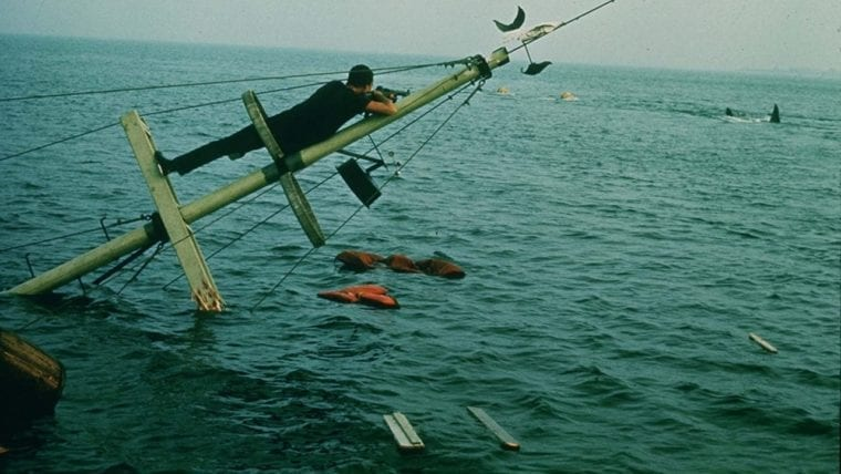 Jaws Has Just Turned 45