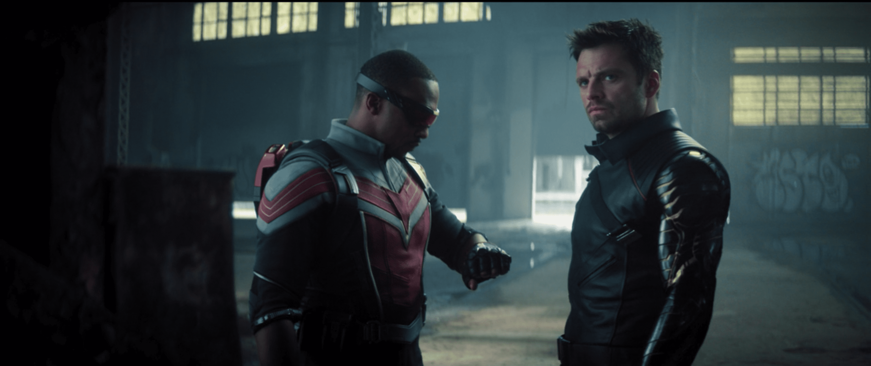 Bucky and Wilson - The Falcon and The Winter Soldier.